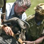 Randy-colaring-wildebeest
